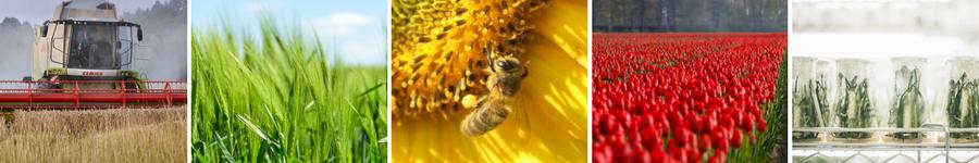 plant health agrooh bioscience translations